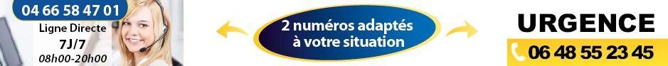 Entreprise devis et tarif guepes, frelons asiatique Arles 13 bouches du rhone